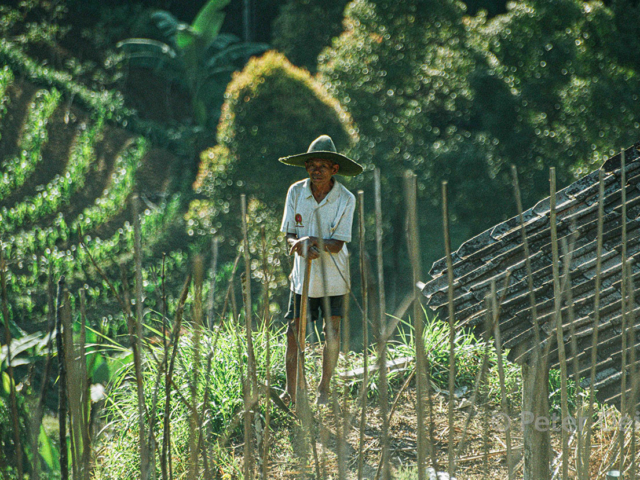 indonesia - 2003_bali farmer