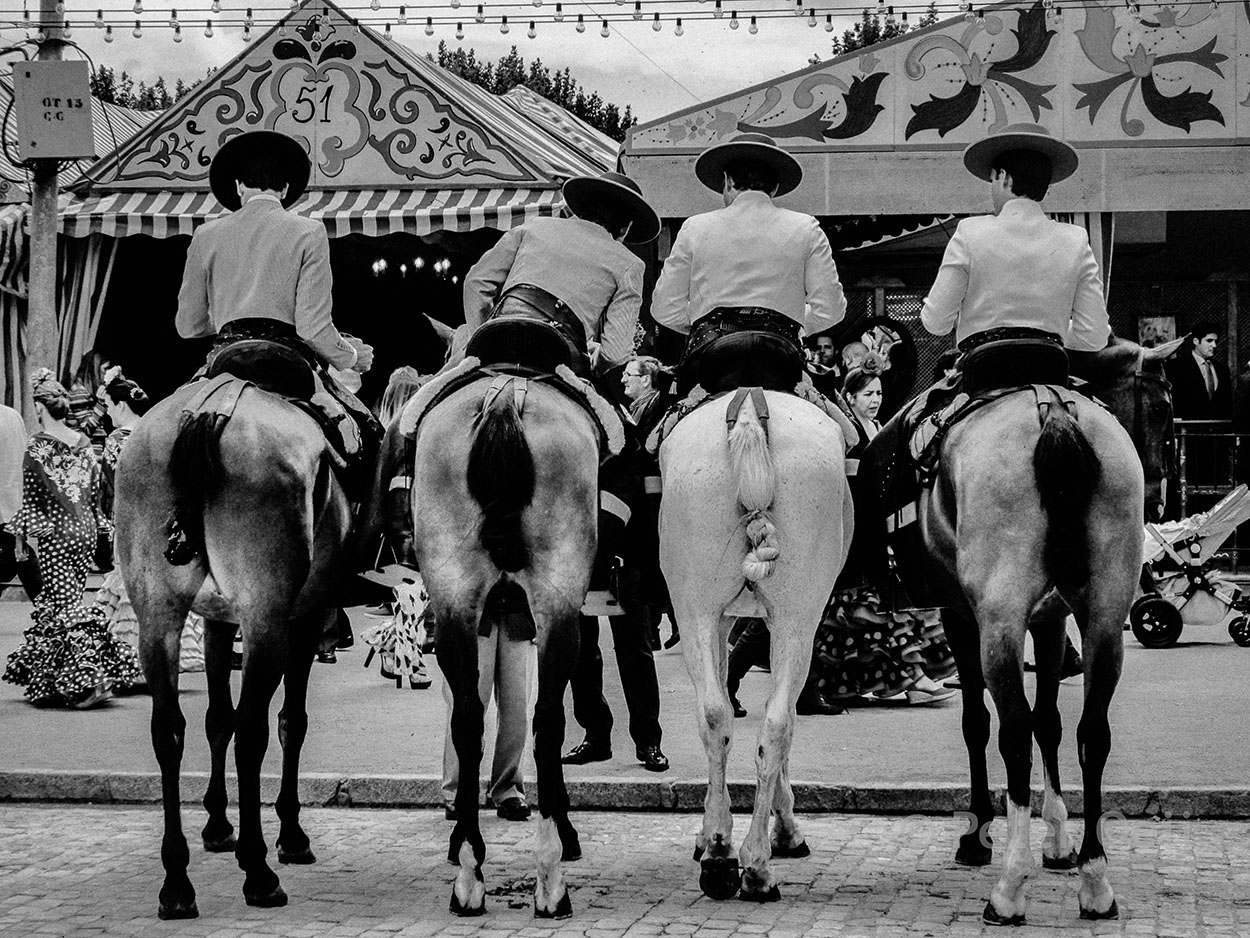 spain - 2017_sevilla feria horsemen horses