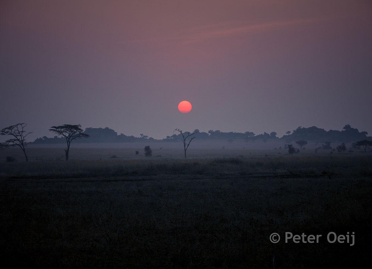 tanzania 2012_serengeti sunrise